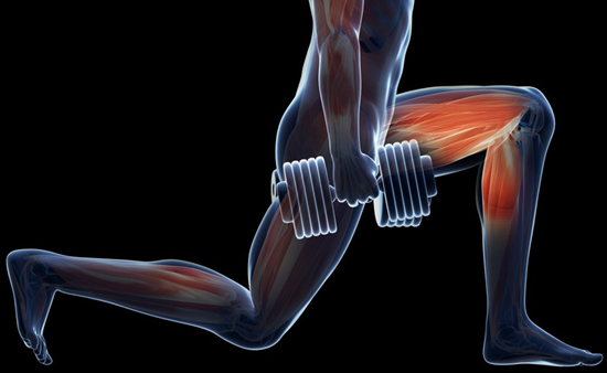 best leg exercises with dumbbells 2016