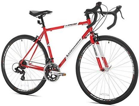 Giordano Libero road bike under 400 dollars