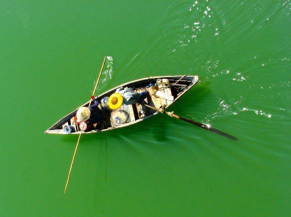 People fishing in flat water using kayak
