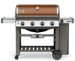 10 Best Propane Smokers – Reviews & Buyer Guide for 2017
