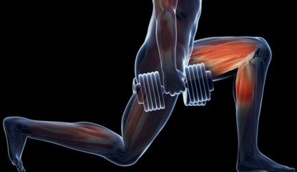 Best Leg Exercises with Dumbbells for Men and Women