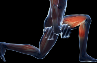 Best Leg Exercises with Dumbbells for Men and Women
